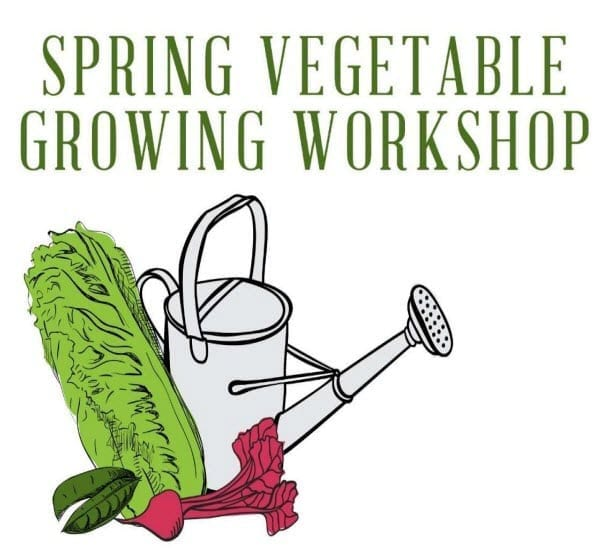 Spring Vegetable Workshop